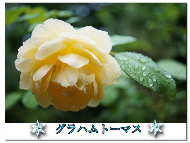 13-08-31_2255.jpg