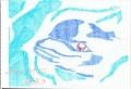 ペン画/動物画:「目付きと態度の悪いイルカ」