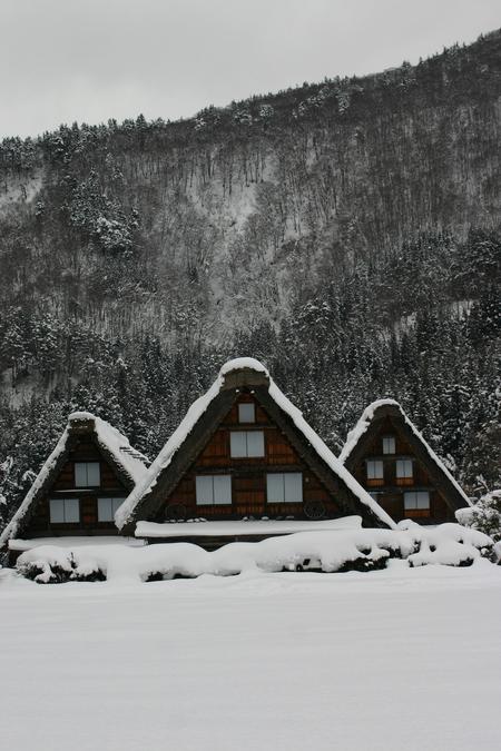 冬の空気の澄んだ時は星空もキレイ! 眼下に一面に広がる~世界遺産 白川郷~冬の風景はこの時期ならでは・・・ ④