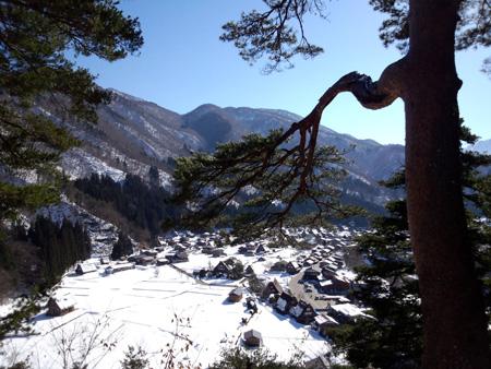 今年は、雪が少ないと言われ~世界遺産 白川郷~雪道に慣れていない方にはむしろラッキー かもしれません ①