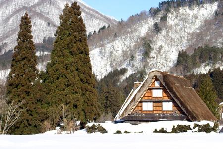 冬の景色、冬だから感じることができる温かさ~世界遺産・白川郷~冬ならではの魅力を探す旅!⑨