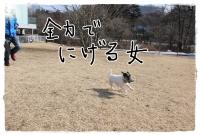 kn13_2014020211020363a.jpg