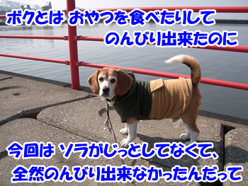 20130928_1.png