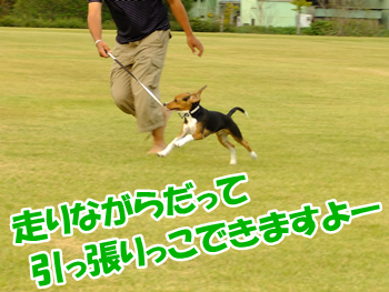20130928_5.png