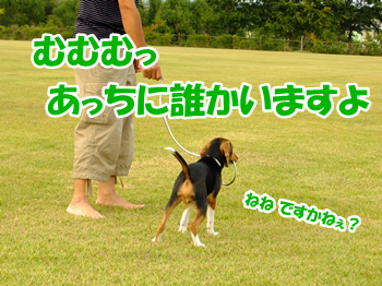 20130928_6.png