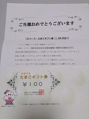 DSC_0011_convert_20130730092059.jpg