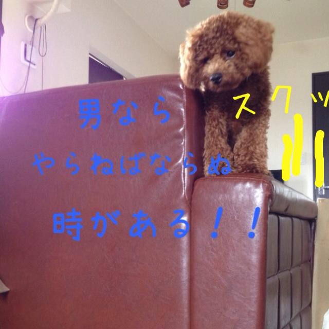 IMG_3859.jpg
