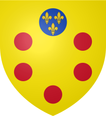 218px-Coat_of_Arms_of_Medici_svg.png