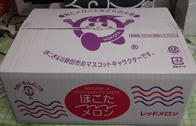 金ちゃんのメロン (3)