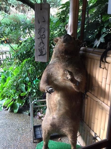 篠山・いわや 2014・11月2日 (5)