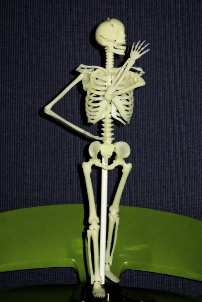 骨格模型2_convert_20130719220748