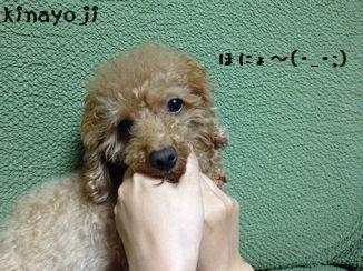 顔バリ風2