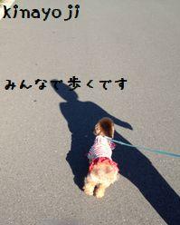 きゅうじつおさんぽ3