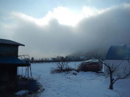 農園で (1)