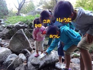 DSC02124_convert_20131015213215.jpg