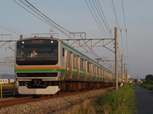 IMGP9593.jpg