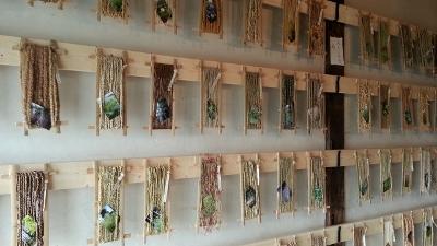 草の糸20131027_144531 (400x225)