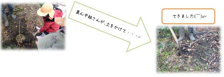 2_20140117181939f1a.jpg