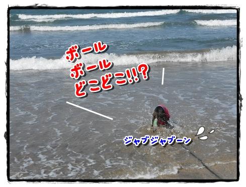 海へジャブーン