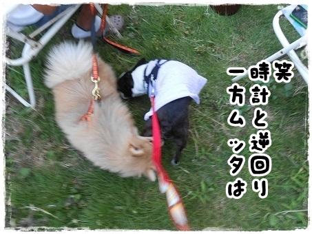 ジンギスカン3