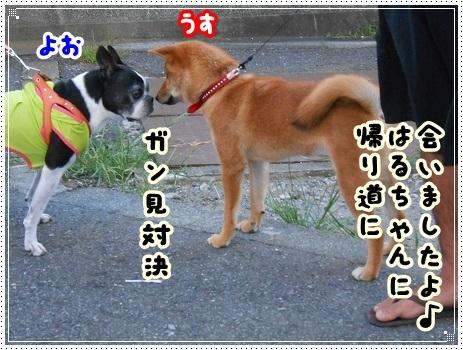 DSCN7504.jpg