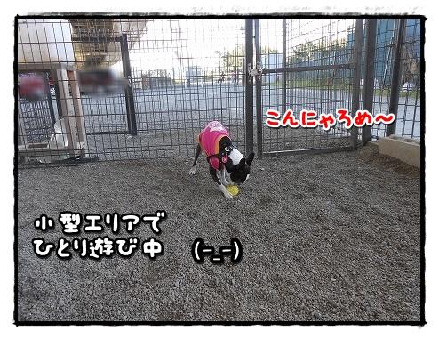 DSCN8941.jpg