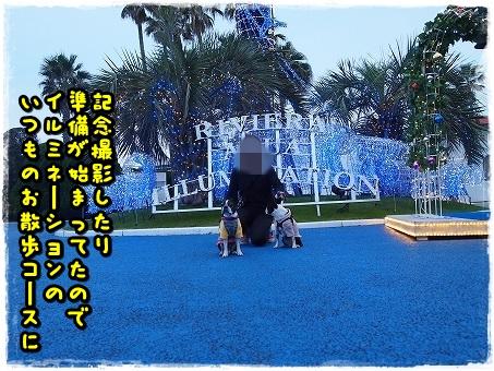 PB038396.jpg