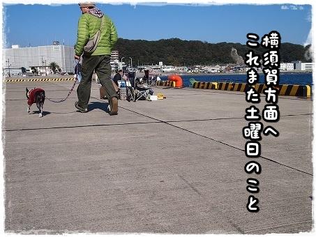 PB169148.jpg