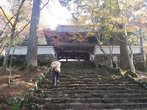 2014-11-22-12-37-09_photo.jpg