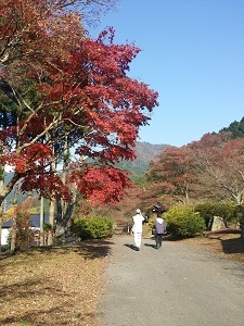 2014-11-22-12-56-40_photo.jpg