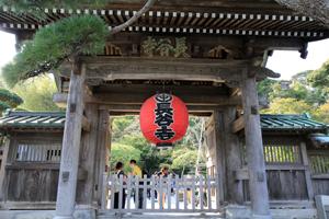 鎌倉の長谷寺