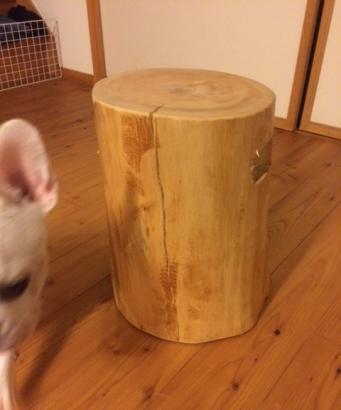 丸太のイス完成3