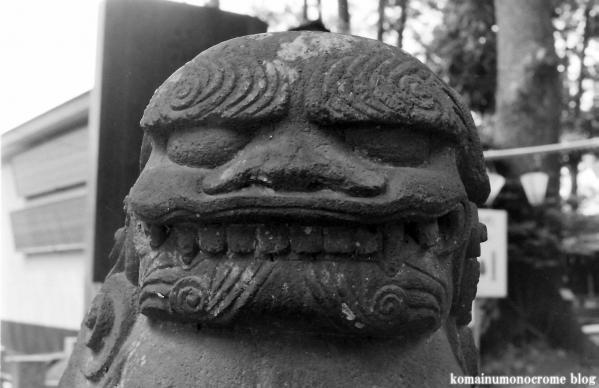 西堀氷川神社(さいたま市桜区西堀)4