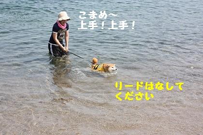 IMG_0013_.jpg