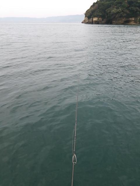 ボートエギング4