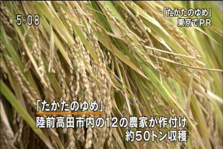 20131018170810.jpg