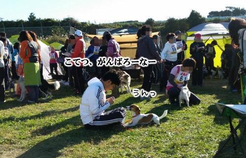 20141115_085215.jpg
