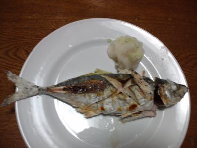 釣り物真アジの塩焼き