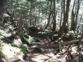 130928駒ヶ岳11