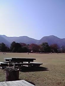 シングル・スマイル ver ブロぐ 時々ストリングス-養老公園