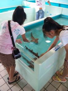 シングル・スマイル ver ブロぐ 時々ストリングス-松島水族館ふれあい