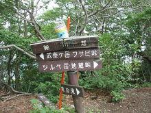 シングル・スマイル ver ブロぐ 最近なんだかストリングスでヤッホー!-武奈ヶ岳29