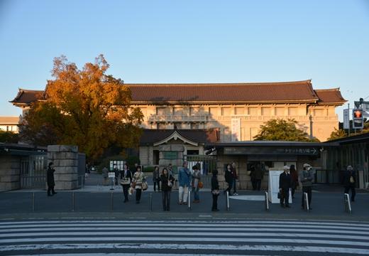 上野ネクスト (449)_R