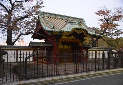 上野ネクスト (557)_R