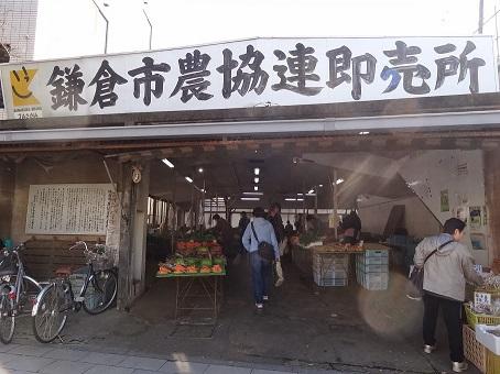 鎌倉駅周辺15