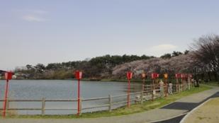 きれいな公園です。
