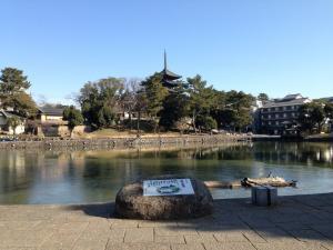 sarusawa0120_convert_20140120113450.jpg
