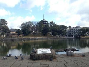 sarusawa0122_convert_20140122113351.jpg