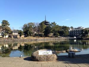 sarusawa0124_convert_20140124112417.jpg
