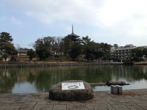 sarusawa0131_convert_20140131121650.jpg